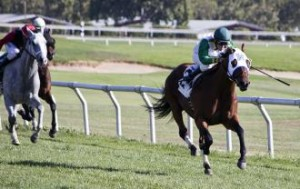 Outside Nashville can get the Pick-6 off to a long shot start after this gallop at Santa Rosa.